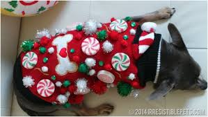 sweater with dogs on it diy tacky sweater for dogs