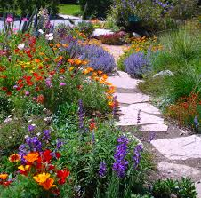 plants for rock gardens planning for springtime plantings