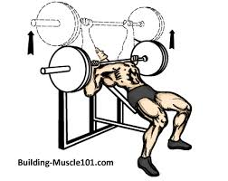 Incline Bench Press Grip The Incline Barbell Bench Press