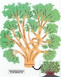 the indo european language tree anthropology net