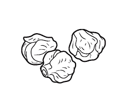 Brussels Sprouts Coloring Page Coloringcrew Com Sprout Coloring Pages