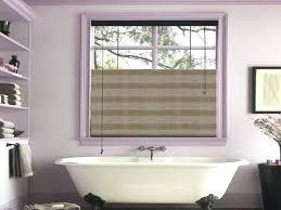 window ideas for bathrooms bathroom windows ideas dayri me