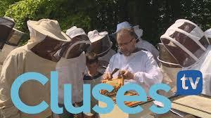 bureau vall cluses cluses fr
