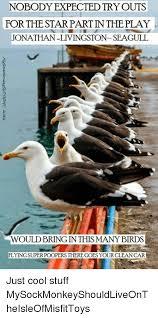 Finding Nemo Seagulls Meme - 25 best memes about seagull seagull memes