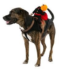 Dog Halloween Costumes Girls 17 Dog Halloween Costumes Images Pet Costumes
