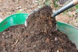 Garden Mulch Types - proper mulching for organic gardens garden u0026 greenhouse