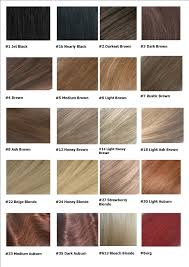 Dark Colors Names Awesome Hair Color Chart Images Sample Resumes U0026 Sample Cover