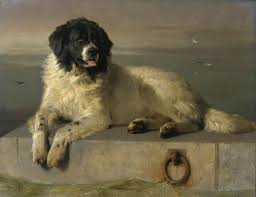 cultural depictions of the dog wikipedia