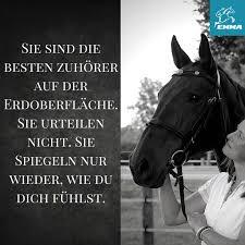 pferdesprüche 58 best pferde images on quotes horses and