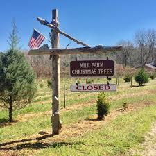 millfarm christmas trees u0026 berry farm home facebook