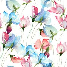 sweet pea flowers seamless wallpaper with sweet pea flowers wall mural pixers