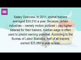 the bureau trainer how much can you as a trainer