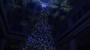 macy s on state holds annual tree lighting
