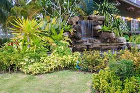 Tropical Rock Garden 50 Pictures Of Backyard Garden Waterfalls Ideas Designs