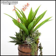 agave and aloe succulent mix in rustic wood barrel planter 14indx48inh