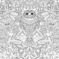 secret garden coloring book chile 64 best colouring pages images on butterfly child and