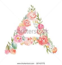set pink blooming fresh roses buds stock photo 604221674