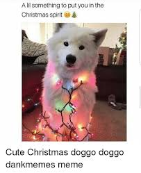 Cute Christmas Meme - a lil something to put you in the christmas spirit 4 cute christmas