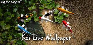 koi live wallpaper version apk free koi live wallpaper pro apk free bedroom and living room