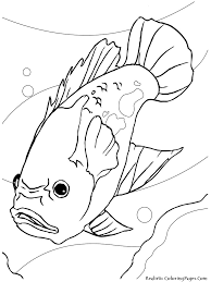 realistic tropical fish coloring pages special offers