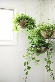 easy hanging planter diy u2013 a beautiful mess