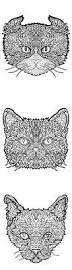 complicated cats printable coloring book complicated coloring