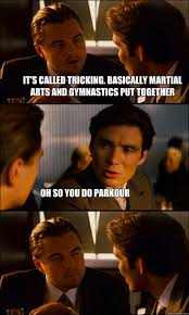 Martial Arts Memes - it s called tricking basically martial arts and gymnastics put