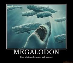 Nope Meme - i fear sharks but this is just a huge nope meme guy