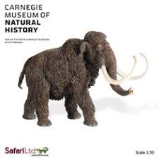 wooly mammoth animalia prehistoric prehistoric