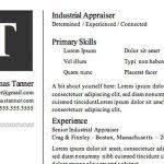 successful resume templates excellent resume templates download excellent resume templates