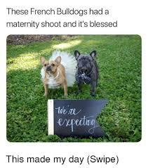 Maternity Memes - 25 best memes about maternity maternity memes