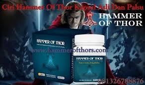 hammer of thor asli 4d pria hoaxornot work agen resmi vimax