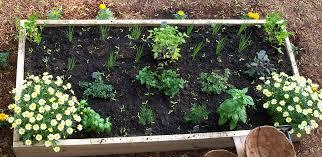 coonamessett farm herb garden bed and breakfast cape cod