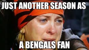 Bengals Memes - bengals steelers photoshops and memes terez owens 1 sports