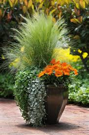 Potted Garden Ideas 1745 Best Container Gardening Ideas Images On Pinterest