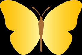 simple cartoon butterfly cliparts co