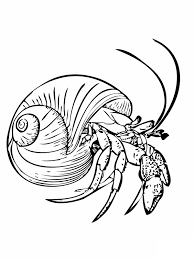 house for hermit crab coloring pages coloring pages wallpaper