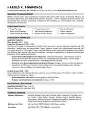 Sample Resume Business by Sample Resume Resumes Pinterest Sample Resume