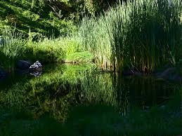 laguna woods ca real estate blog