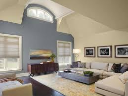 best grey color for living room centerfieldbar com