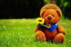 teddy balloons chocolates balloons and teddy bears for s day kremp
