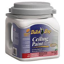 Washable Ceiling Paint by Ceiling Interior Products