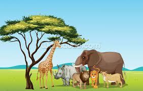 kids wallpaper wall murals wallsauce usa african safari cartoon mural wallpaper