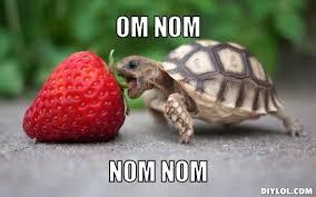 Nom Nom Nom Meme - nomster chef what is a nomster chef the origin of the word nom