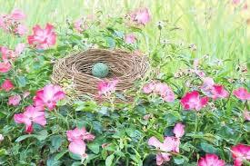 camouflage easter eggs 50 sneakiest easter egg hiding spots survival