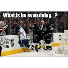 Anaheim Ducks Memes - unique 17 best valentine s memes images on pinterest wallpaper