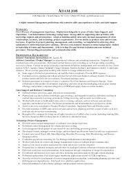 sales director resume examples good sales resume examples sales resume sample successful sales manager resume samples for sales resume sample successful sales manager resume samples