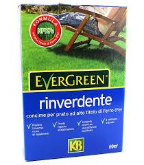 concimazione tappeto erboso concime rinverdente per prato kb evergreen 2kg gogoverde