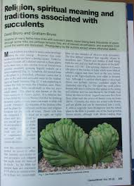 succulents meaning religion spiritual meaning and traditions associated with