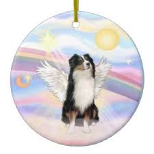 australian shepherd gifts tri color australian shepherd gifts on zazzle